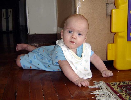 Jasper close to crawling